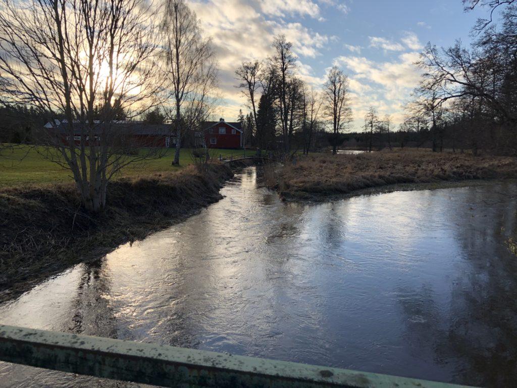 Uthyrning av kajaker och kanoter i Tierp Upplandskusten.