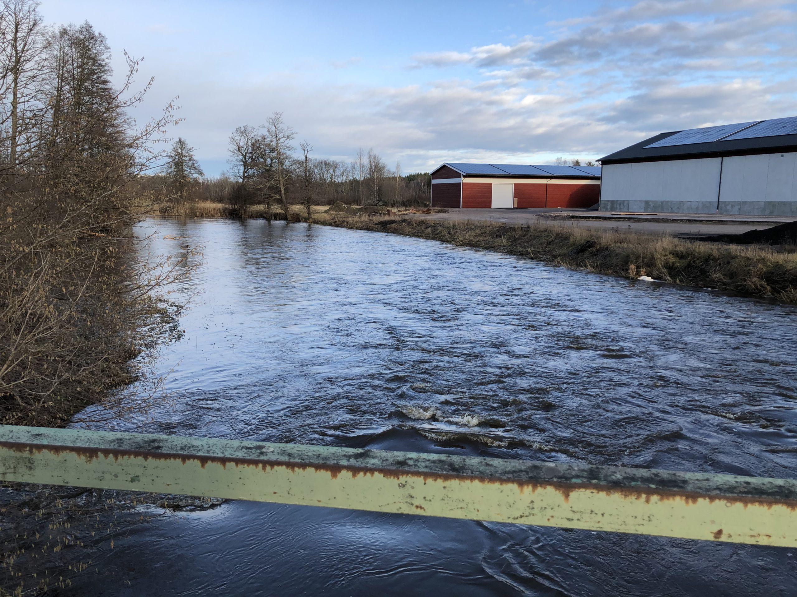 Bokning av kajaker och kanoter i Tierp Upplandskusten.